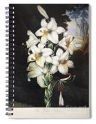 Thornton: White Lily Spiral Notebook