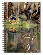 Those Eyes Frog Eyes Spiral Notebook