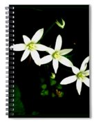 Those Little Flowers Spiral Notebook