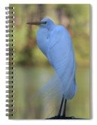 Thoughtful Heron Spiral Notebook