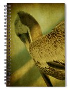 Thoughtful Pelican Spiral Notebook
