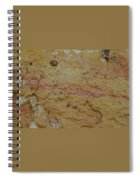 Threads Of Life Spiral Notebook