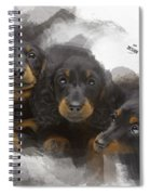 Three Adorable Black And Tan Dachshund Puppies Spiral Notebook