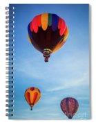 Three Balloons Spiral Notebook