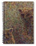 Three Bears Spiral Notebook