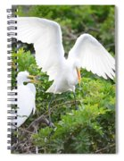 Three Birds Of A Feather Flock Together Spiral Notebook
