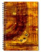 Three Brass Tokens I Spiral Notebook
