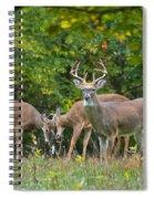 Three Bucks_0054_4463 Spiral Notebook