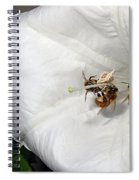 Three Busy Bees Spiral Notebook