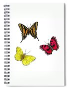 Three Butterflies Spiral Notebook