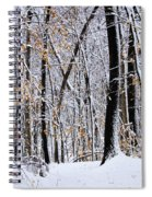 Three Creeks Conservation Area - Winter Spiral Notebook
