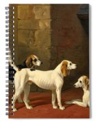Three Fox Hounds In A Paved Kennel Yard Spiral Notebook