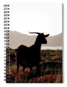 Three Goats Spiral Notebook