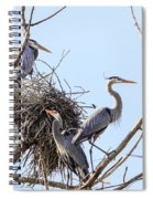 Three Herons Spiral Notebook