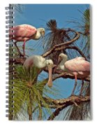 Three In A Tree Spiral Notebook