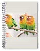 Three Is A Crowd Spiral Notebook
