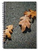 Three Oak Leaves Spiral Notebook