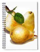 Three Pears Spiral Notebook