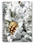 Three Pinecones Spiral Notebook