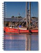 Three Princess Schrimpboat Spiral Notebook