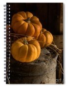 Three Pumpkins On A Bucket Spiral Notebook
