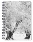 Three Snow Frosted Trees In Black And White Spiral Notebook
