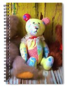 Three Special Bears Spiral Notebook