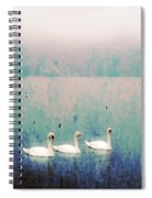 Three Swans Spiral Notebook
