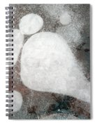 Three Toes Spiral Notebook