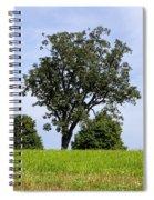 Three Tree Hill Spiral Notebook