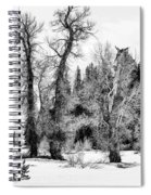 Three Trees Bw Spiral Notebook