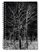 Three Trees In Black And White Spiral Notebook