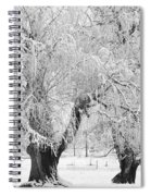 Three Trees In The Snow - Bw Fine Art Photography Print Spiral Notebook