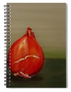 Three Tulip Bulbs Spiral Notebook