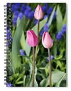 Three Young Tulips Spiral Notebook