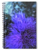 Thrones And Dominions Spiral Notebook