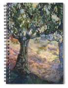 Through Ancient Olives Spiral Notebook