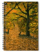 Through The Fallen Leaves Spiral Notebook