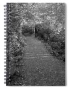 Through The Forest Canopy Black And White Spiral Notebook