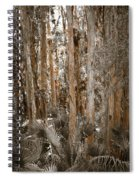 Through The Forest Trees Spiral Notebook