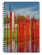 Through The Glass Rods Spiral Notebook