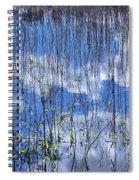 Through The Reeds Spiral Notebook