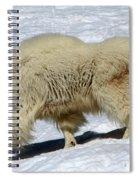 Through The Snows Spiral Notebook