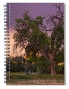 Thunderstorm In The Woods Spiral Notebook
