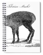 Tibetan Musk Deer Spiral Notebook
