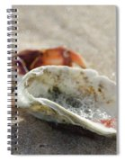 Tidal Deposit Spiral Notebook