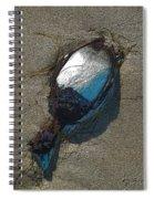 Tidal Duck Spiral Notebook