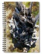 Tidal Sculpture Spiral Notebook