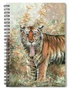 Tiger - 28 Spiral Notebook