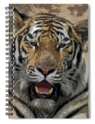 Tiger Abstract Spiral Notebook